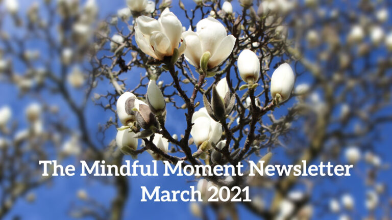 The Mindful Moment Newsletter