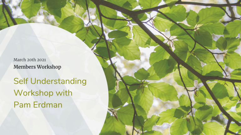 Self Understanding Workshop with Pam Erdman - March 20th 2021